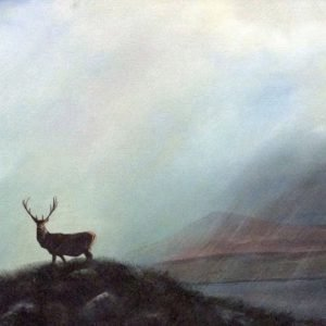The Lone Stag. Glenveagh_Art_House_Ireland